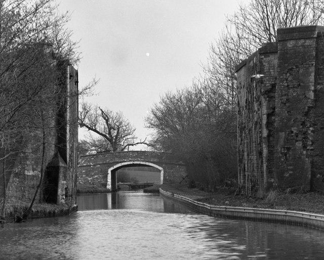 Paddock No 2 Bridge No 9, Llangollen Canal