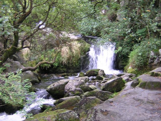 Dolgoch Waterfalls