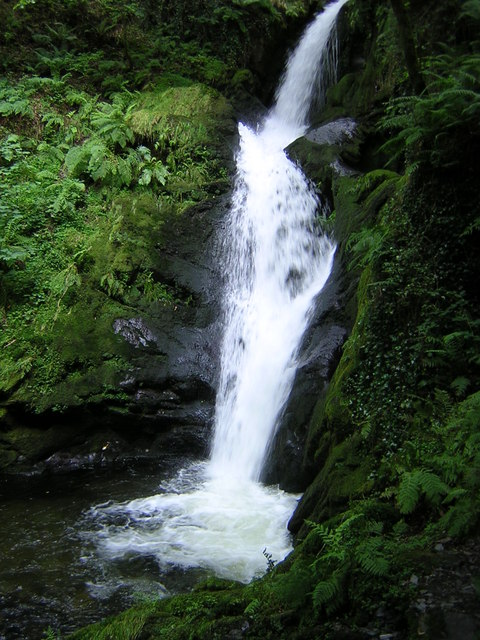 Close up of  Dolgoch Falls