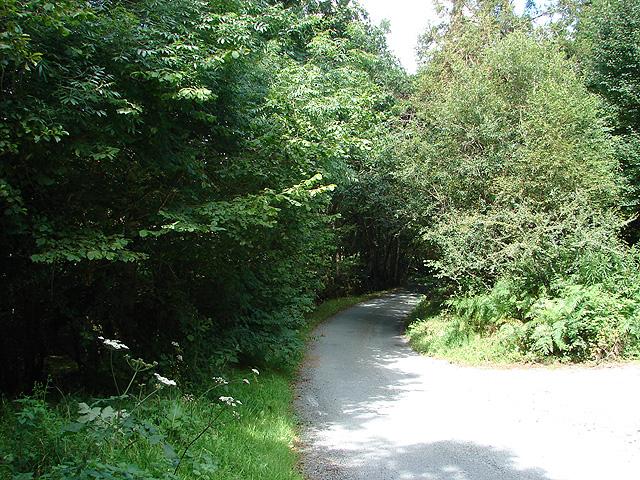 Lane through Cwm Tafolog
