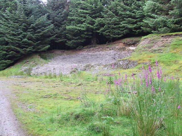 Soil Profile in Old Quarry, near Draenllwyn-du, Ceredigion