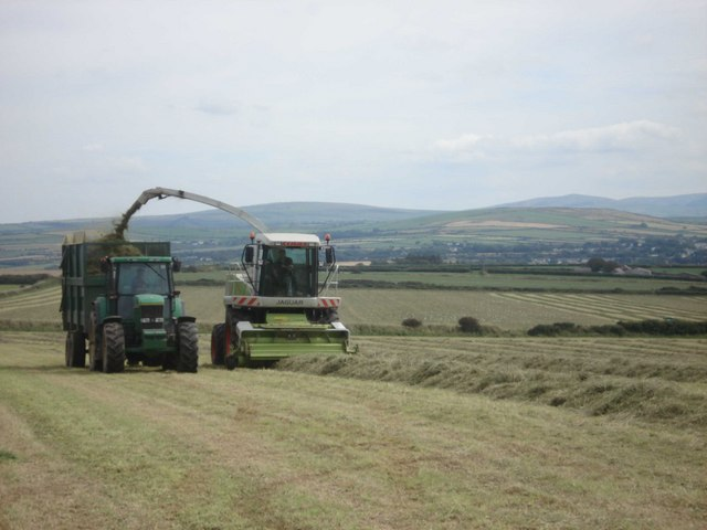 Cutting grass for silage