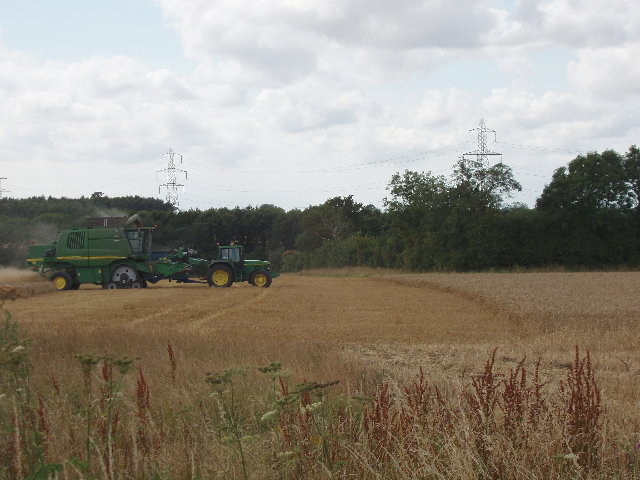 Combine harvester cutting wheat field