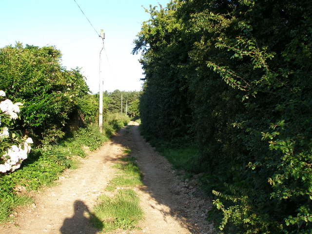 Country lane off  West End