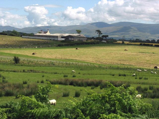 Marchynys Farm