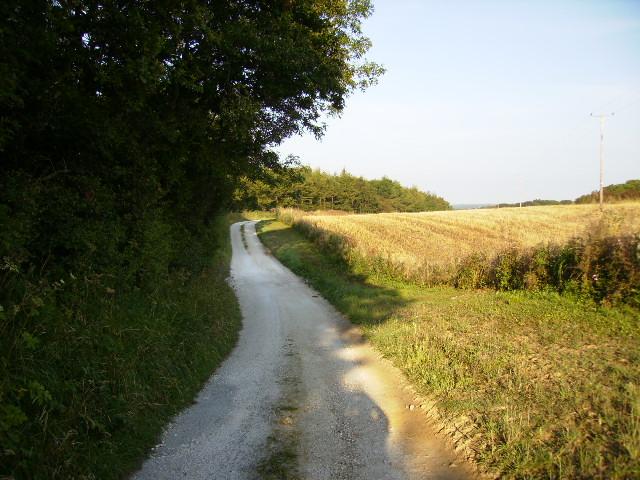 Track on East Ayton Moor