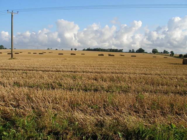 Large straw bales await collection