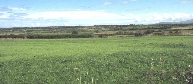Improved grassland