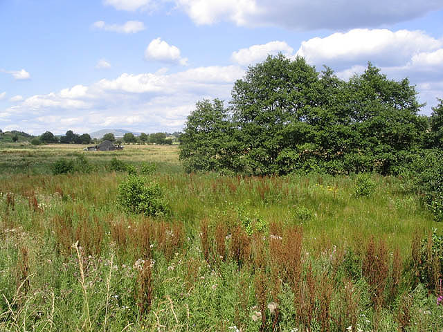 Scrubland by the B6357