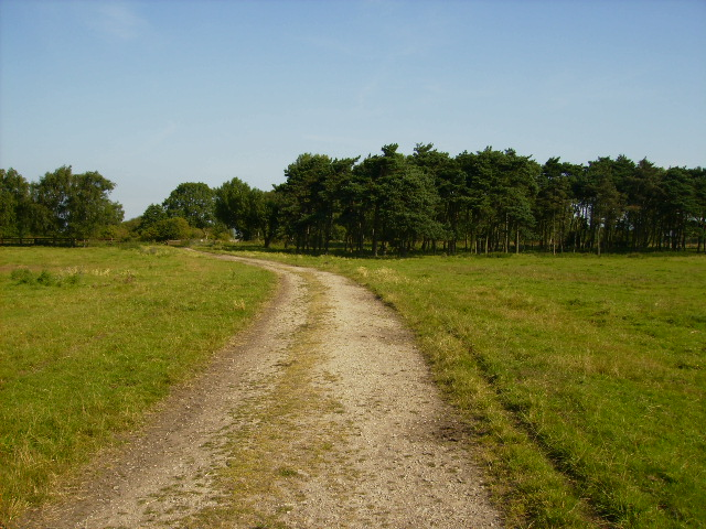 Track known as Willerby Carr Lane