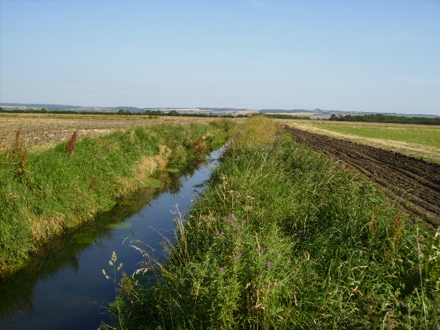 Drainage ditch on Seamer Carr