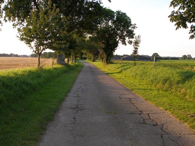 Lane towards Woodlands Farm