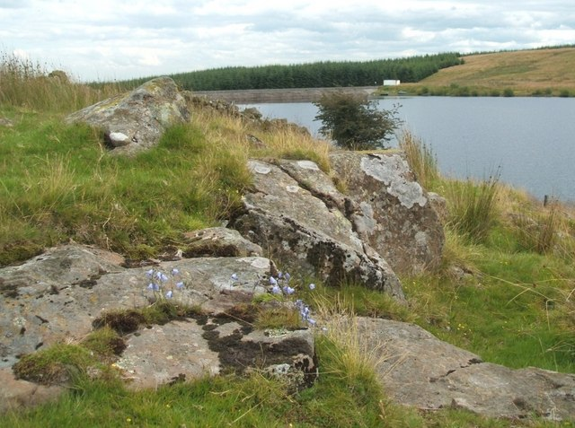 Looking S/E over Buckieburn reservoir
