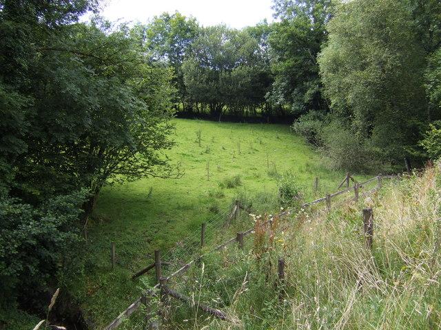 Grazing land at Blaen-y-cwm