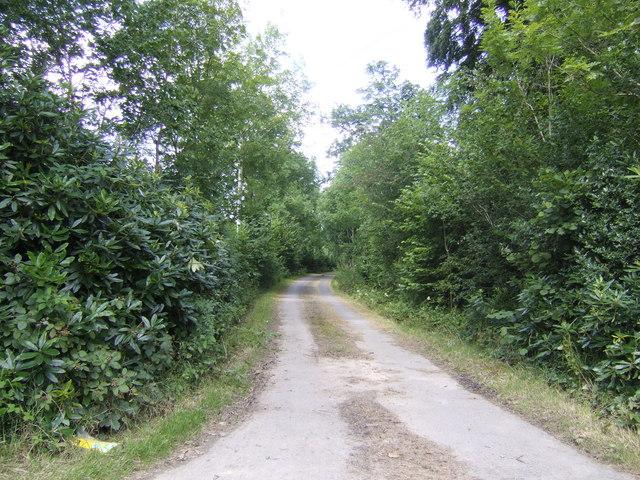 Road to Dolgarreg
