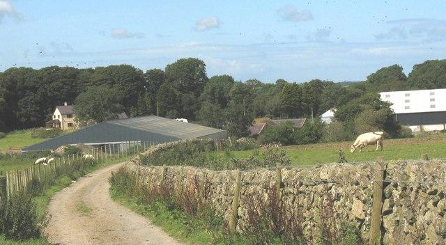 Modern farm buildings at Ty Fry