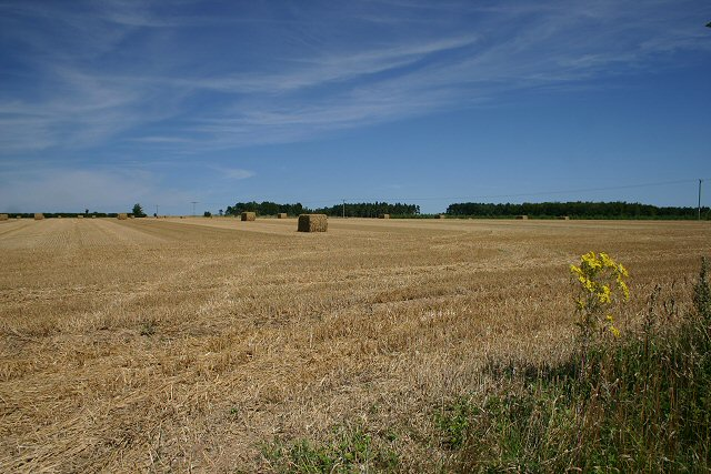 Stubble field near Hockwold