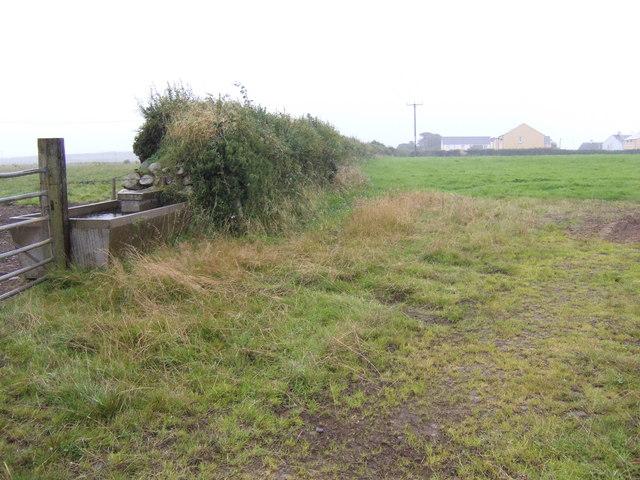 View to Trefgarn Owen