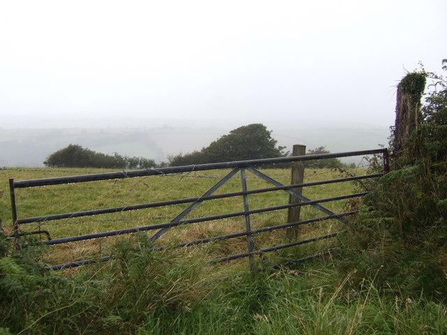 Gateway to a misty field
