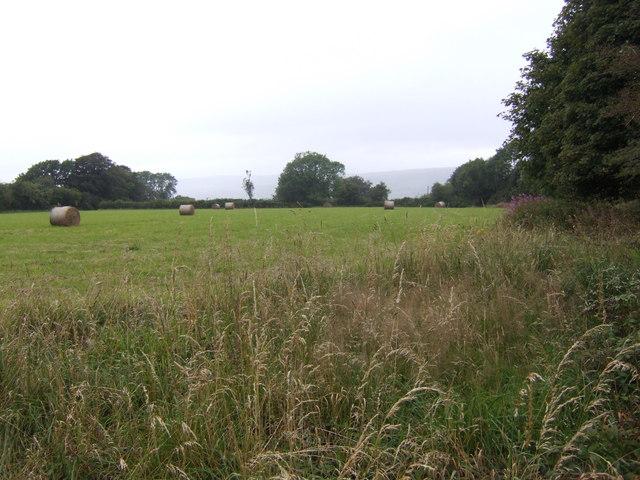 Hay field near Pen-lan