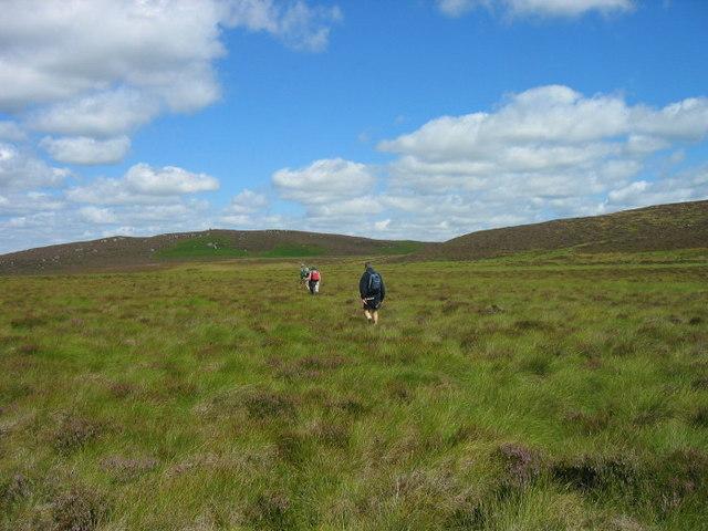 Moorland near Darden Pike