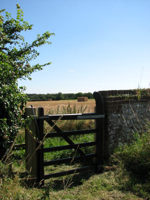 View towards Osier Carr from churchyard gate