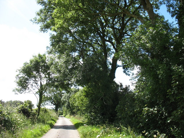 Country road approaching Dyffryn
