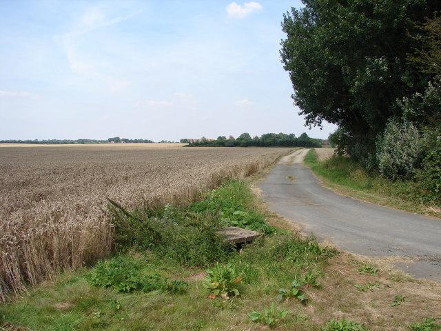 Demolished Transmission Mast and Old Road