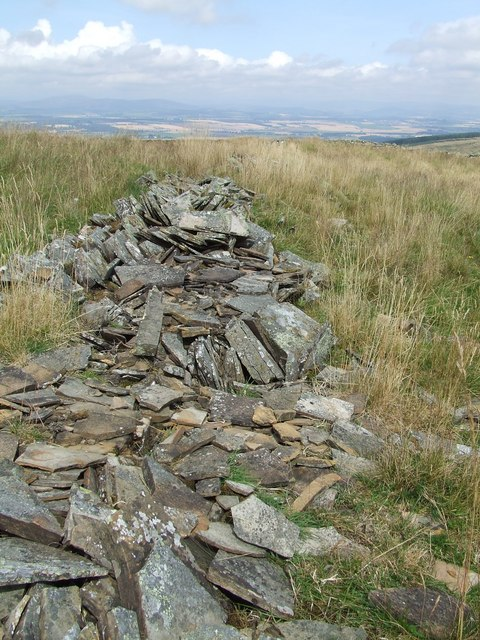 Ruined Drystane-Dyke