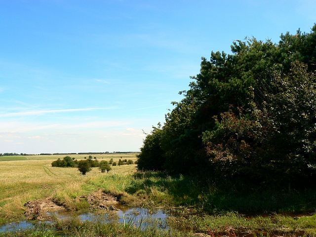 Baynton Down, near Imber