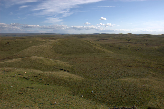 View South from Domen Milwyn