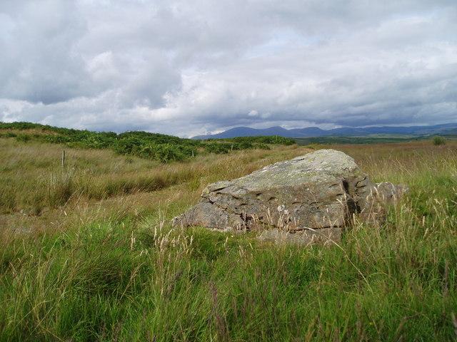 Trackside boulder.