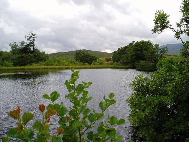 Upper Loch, Garroch Estate.