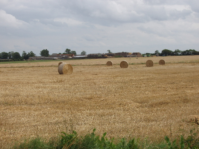 Baled straw, Thorpe Row beyond