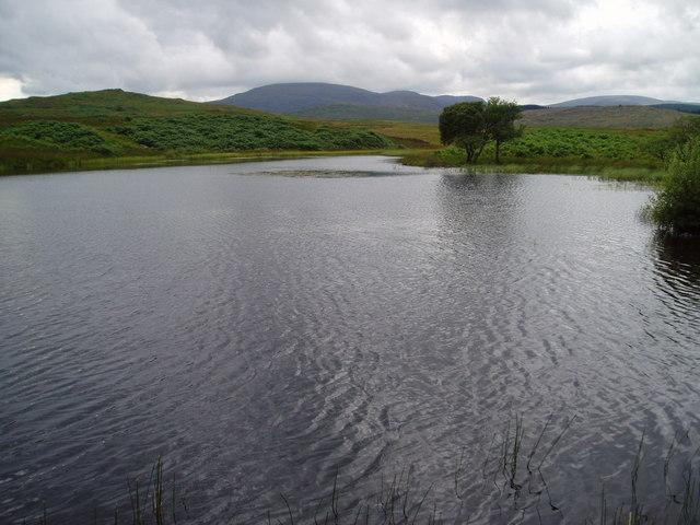 Garroch Dam, Garroch Estate.