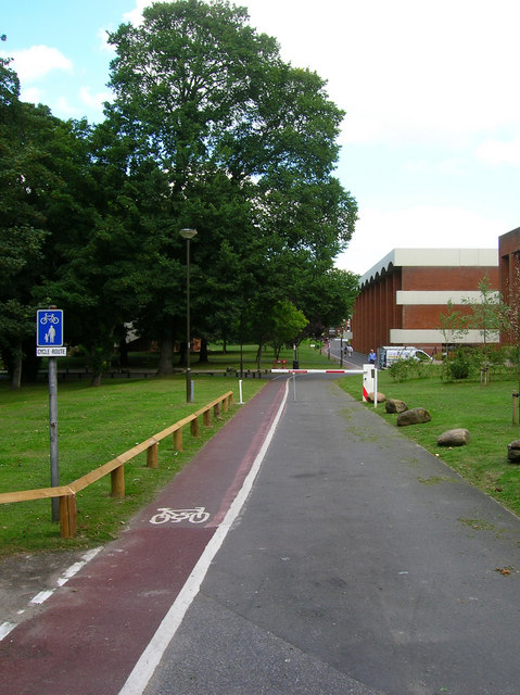 Cycle Path and Service Road, University of Sussex