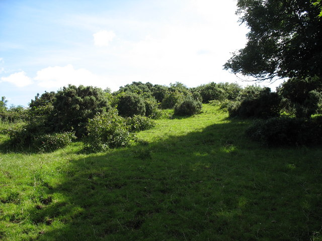 Part of the earthworks on the boss above Tan y Graig Farmhouse