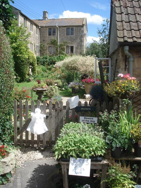 Plants for sale at Lacock