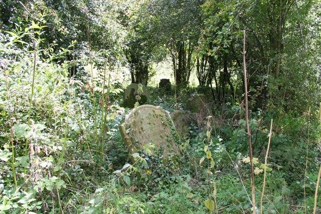 Overgrown headstones