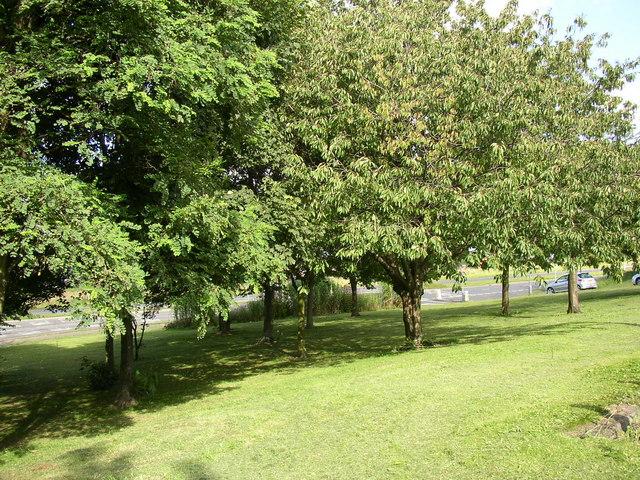 Landscaped area off Bradford Road, Cleckheaton