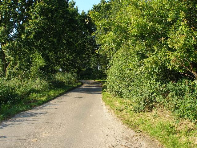 Cess Lane