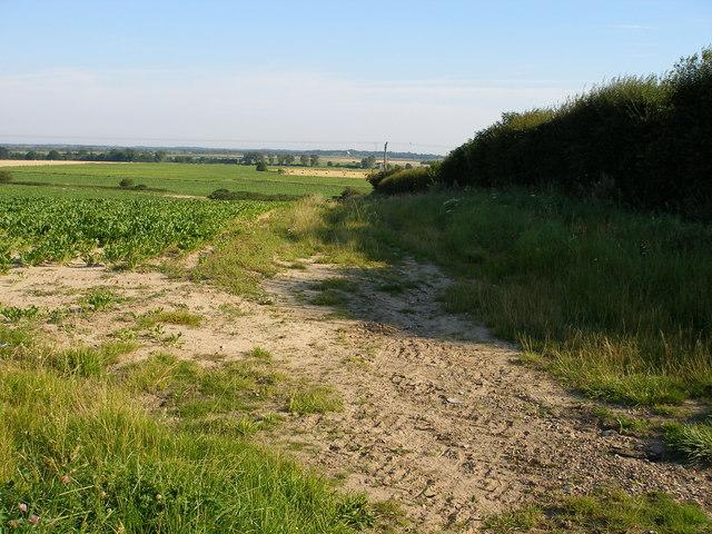 Farmland rolls down towards Martham Broad