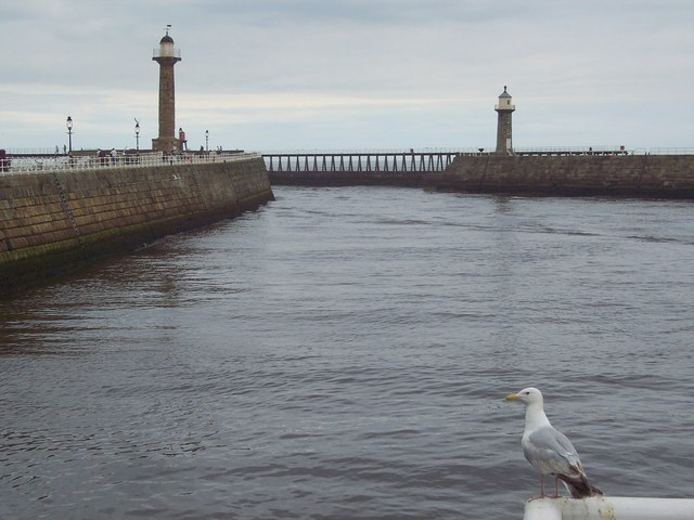 Seagull's eye view of the channel at Whitby