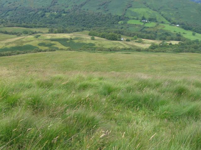 Cruach Dhubh hillside
