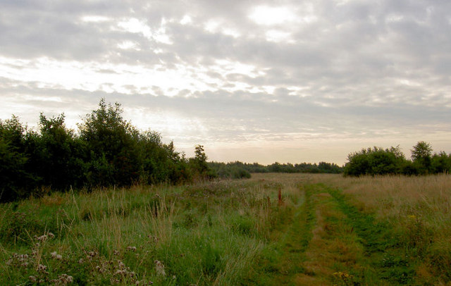 Country park on reclaimed former spoil heap.