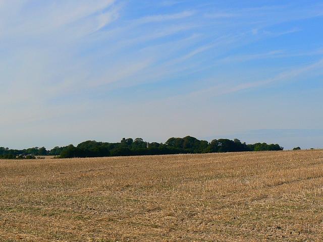 Harvested field, near Winterbourne Bassett