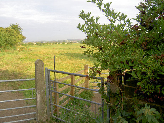 Gates onto the ings.