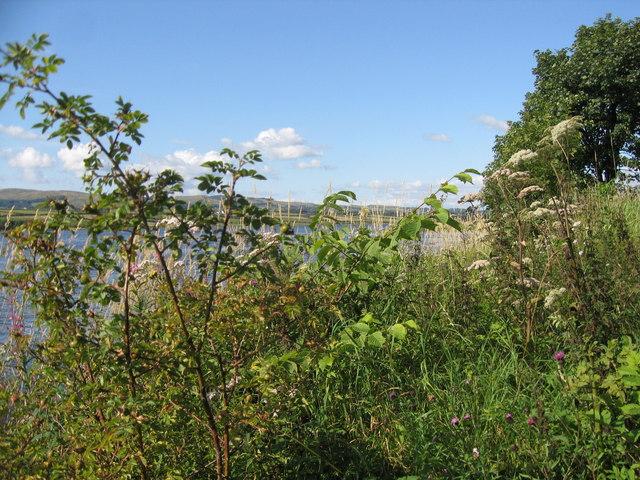Kilbirnie Loch