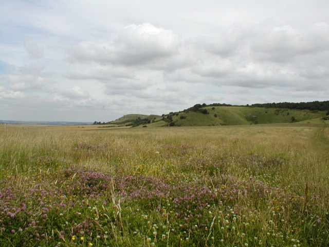 Ivinghoe Hills from the Ivinghoe-Aldbury road