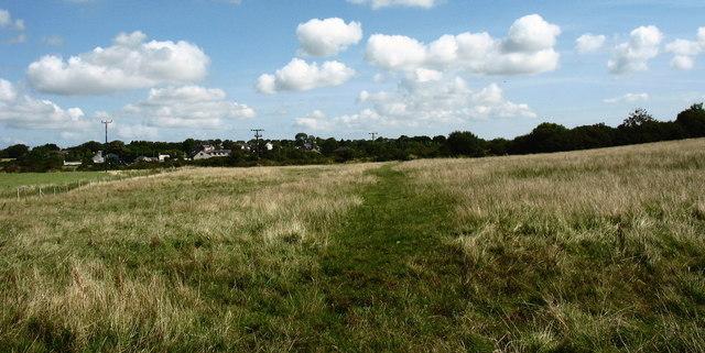 Wetland by Afon Braint